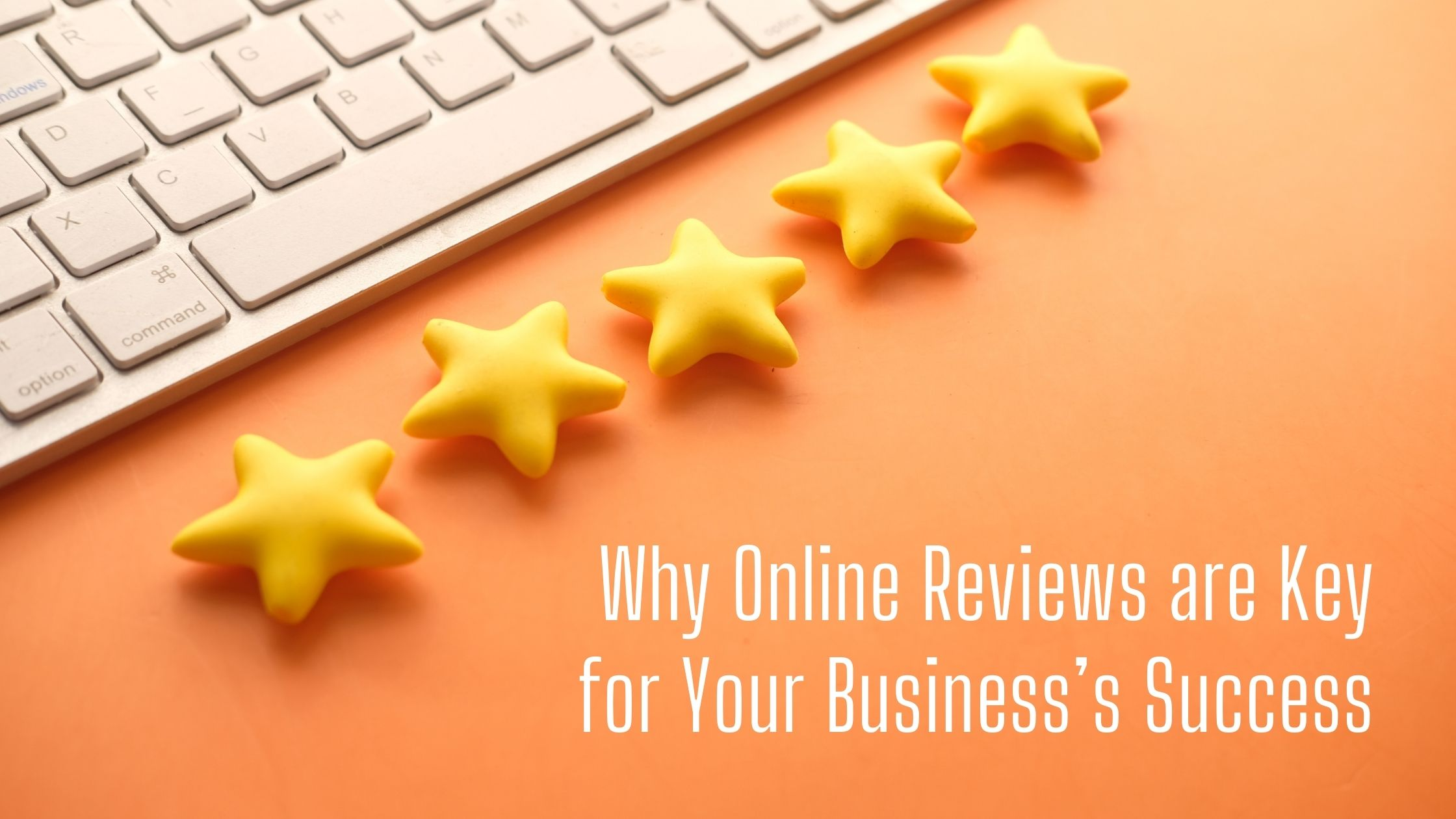 Why Online Reviews are Key for Your Business's Success