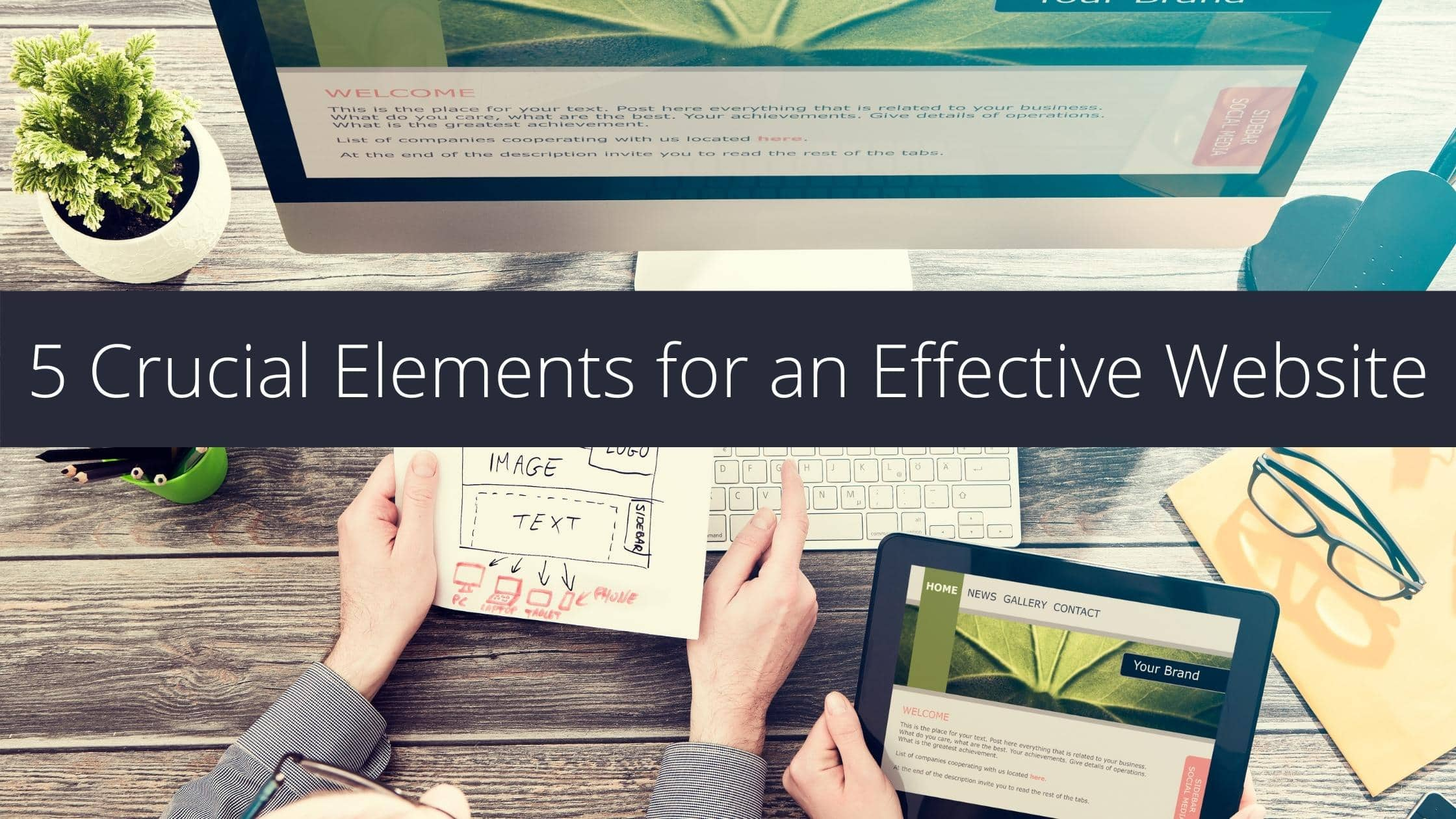5 Crucial Elements for an Effective Website